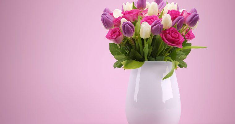 Schnittblumen länger frisch halten