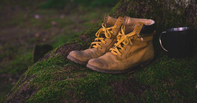Von Tasche bis Schuhe: Ledersachen richtig pflegen